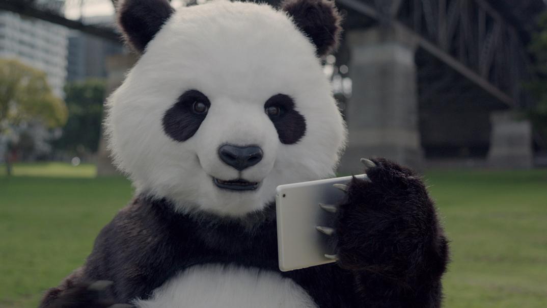 """""""Good Panda, Good Tourist"""""""